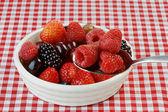 Petits fruits dans un bol — Photo