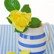 Yellow Rose in a Jug — Stock Photo #47076551