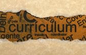 Curriculum torn paper — Stockfoto