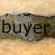 Stock Photo: Buyer concept