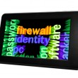 Stock Photo: Firewall identity concept