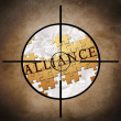 Stock Photo: Alliance target