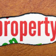 Royalty-Free Stock Photo: Property text on torn paper