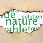 Nature paper hole — Stock Photo