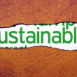 Stock Photo: Sustainable text on torn paper