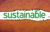 Sustainable text on torn paper — Stock Photo
