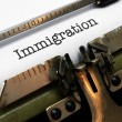 Stock Photo: Immigration text on typewriter