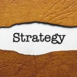 Strategy — Stock Photo #31185189