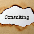 Stock Photo: Consulting