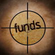 Funds target — Stock Photo