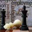 Chess and employment concept — Stock Photo #32981071