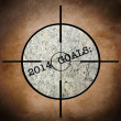 2014 goals target — Stock Photo