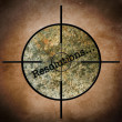 Stock Photo: Resolution target concept