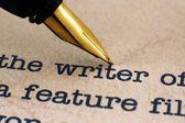 Fountain pen on writer — Stock Photo