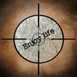Enjoy life target — Stock Photo