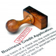 Business credit application — Stock Photo