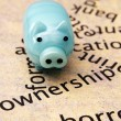 Piggy bank and borrow concept — Stockfoto #35218783