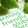 Stock Photo: Green leaves and global warming concept
