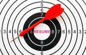 Resume target — Stock Photo
