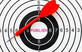 Publish target concept — Stock Photo