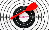 Survey target concept — Stock Photo