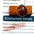 Employment form - approved — Stock Photo