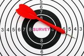 Web survey target — Stock Photo