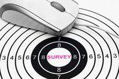 Web survey target — Stock Photo