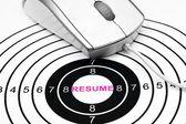 Resume target — Stockfoto