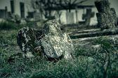 Eski mezarlık — Stok fotoğraf