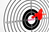 Survey target — Stock Photo