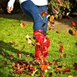 Kicking Leaves - Stock Photo
