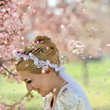 Cherry Blossom Shower Over Bride - Stock Photo