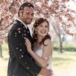 Couple Showered with Cherry Blossoms - Stock Photo