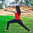 Woman Yogi Performs Warrior Pose in Park — Stock Photo