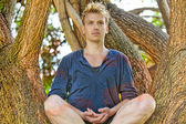 Man Meditates in Tree — Stock Photo