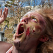 Screaming Zombie in Cemetery — Stock Photo #29949725