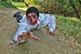Crawling Zombie — Stock Photo