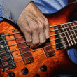 Killer Bass — Stock Photo