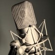Studio Mic — Stock Photo