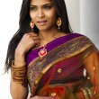 Striking Indian Beauty — Stock Photo