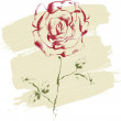 Hand drawn rose — Stock Vector #12642620
