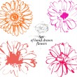 Flowers - Stock Vector