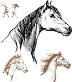 Horses — Vetorial Stock