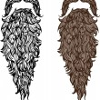 Beard and mustache — Vector de stock #30135301