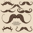 Collection of mustache — Stock Vector