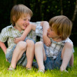 Playfull boys — Stock Photo #12593036