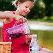 Teenage girl on a picknick - Stock Photo
