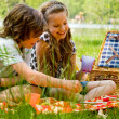 Kids having fun while picnicking — Stock Photo