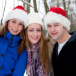 Royalty-Free Stock Photo: Trio enjoying a christmas day outside